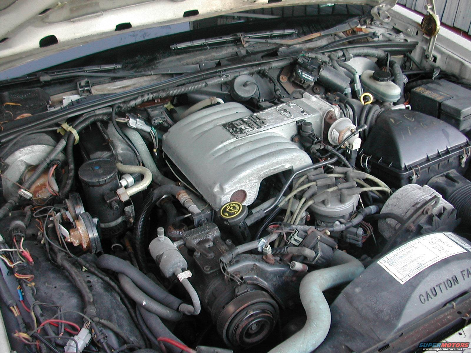 ford crown victoria engine  ford  free engine image for