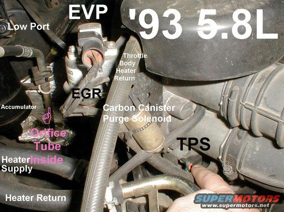 jeep cherokee sensor locations for v8  jeep  free engine