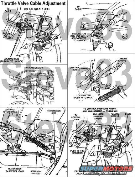 tvcable.jpg Throttle Valve (TV) Control Cable Adjustment  Two methods of TV system adjustment are available. 1. TV cable adjustment with engine off. 2. TV control pressure check and adjustment procedure with engine on.  The Throttle Valve (TV) Control Cable System consists of a cable attaching stud on the throttle body throttle lever, the TV Control Cable Assembly, the External TV Control Lever on the transmission, and the Cable Mounting Brackets at the throttle body and transmission. As the throttle body lever is moved from idle to wide open throttle (WOT), the TV control cable pulls the transmission TV control lever from idle to WOT. Return of the cable and transmission lever towards idle is accomplished by the return spring on the transmission end of the cable assembly. This spring and the end of the cable assembly is protected by a flexible rubber boot. The transmission external TV control lever actuates the internal TV control mechanism which regulates the TV control pressure. The travel of this lever is controlled by stops internal to the transmission.  The TV control cable is set and locked to its proper length during initial assembly by pushing in the locking tab at the throttle body end of the cable assembly. When the tab is unlocked, the cable is released for adjustment. The take-up spring at this end of the cable automatically tensions the cable when released. With the slack taken up and the locking tab pushed in, the take-up spring plays no part in the operation of the system.  Under normal circumstances, it should not be necessary to alter or readjust the initial setting of the TV control cable. Situations requiring readjustment of the TV control cable include maintenance involving the removal and/or replacement of the throttle body, transmission, or TV cable assembly.  When the TV control cable is properly set, the transmission TV control lever will be at its internal idle stop (lever to rear as far as it will travel) when the throttle body throttle lever is at its idle stop.  TV Cable Adjustment with Engine Off  Note: At accelerator pedal WOT, the transmission TV control lever will not be at its WOT stop. The wide open throttle position must not be used as a reference point for adjusting the TV control cable.    Idle Speed Effect on the TV Control Cable  The 5.0L (302 CID) EFI Engines use an air By-Pass ISC that does not affect throttle position. Therefore, idle automatic setting does not affect TV Cable adjustment.  TV Cable Adjustment Procedure, Retention Spring  1. Set parking brake and put selector in N (do not put selector in P). 2. Remove the protective cover over the cable linkage (F-150-250 and Bronco vehicles only). 3. Verify that the throttle lever is at the idle stop. If it isn't, check for binding or interference in the throttle system. Do not attempt to adjust idle stop. 4. Verify that the cable routing is free of sharp bends or pressure points and that the cable operates freely. Lubricate the TV lever ball stud with Premium Long-Life Grease XG-1-C or -K (ESA-M1C75-B) or equivalent if necessary. Check for damage to cable or rubber boot. 5. Unlock the locking tab at the throttle body end by prying up with a small screwdriver to free the cable. 6. A retention spring must be installed on the TV control lever at the transmission, to hold it in the idle position (as far to rear as the lever will travel) with about ten pounds of force. If a suitable single spring is not available, two V8 TV return springs may be used. Attach retention spring(s) to the transmission TV lever and hook rear end of spring to the transmission case. 7. With the TV cable locking tab unlocked and the retention spring in place, rotate the transmission outer TV lever 10-30 degrees and return slowly. 8. Push down on the locking tab until flush. 9. Remove the retention spring(s) from the transmission TV lever.  TV Control Pressure Check and Adjustment with Engine On  NOTE: This procedure requires the use of TV Pressure Gauge with Hose T86L-70002-A or equivalent. The results of the adjustment procedure depend on the accuracy of the pressure gauge. The pressure gauge should be checked (and recalibrated if necessary) approximately four times a year or when the following occurs: a. The needle will not return to 0 psi under no pressure. b. The needle goes past 0 psi (negative side) under no pressure. c. Bumping or dropping a pressure gauge.  1. Attach TV Pressure Gauge with Hose T86L-70002-A or equivalent to the TV port on the transmission. On some applications it might be easier to use the TV Pressure Fitting Service Tool No. D80L-77001-A. 2. Remove the protective cover over the cable linkage. 3. Insert the tapered end of the Cable TV Control Pressure Gauge Tool T86L-70332-A between the crimped slug on the end of the cable and the plastic cable fitting that attaches to the throttle lever. Push in gauge tool, forcing the crimped slug away from the plastic fitting. Make sure gauge tool is pushed in as far as it will go. 4. Operate the engine until normal operating temperature is reached (approximately 5-10 min. with transmission in park). The transmission fluid temperature should be approximately 100-150°F. Do not make pressure check if transmission fluid is cold or too hot to touch. 5. Set parking brake and place shift selector in N (neutral). With gauge block in place and engine idling in neutral, the TV pressure should be 33 ± 5 psi. For best transmission function, set the TV pressure as close as possible to the mean (average) pressure using the following procedure.  NOTE: Do not check or set TV pressure in P (park).   6. Unlock the TV Cable Locking Tab at the throttle body bracket. The adjuster preload spring should cause the adjusting slider to move away from the throttle body and the TV pressure should increase. 7. Push on the slider from behind the bracket until the TV pressure is 33 psi. While still holding the slider, push down on locking tab as far as it will go, locking slider in position.  NOTE: An increase of 1-2 psi is possible when transmission is shifted from NEUTRAL to a forward gear. This is considered normal and no compensation should be made.   8. Remove gauge tool, allowing cable to return to its normal idle position. With the engine still idling in neutral, TV pressure must be at or near zero (less than 5 psi). If not, reinstall gauge tool. Repeat Steps 6 and 7 but set the TV pressure to a pressure lower than previously set but not less than 26 psi. Remove gauge tool and recheck TV pressure to determine if it is at or near zero.  For deteriorated throttle lever grommets, read this caption:  [url=http://www.supermotors.net/registry/media/203172][img]http://www.supermotors.net/getfile/203172/thumbnail/torqueconverter92.jpg[/img][/url] . [url=http://www.supermotors.net/registry/media/491048][img]http://www.supermotors.net/getfile/491048/thumbnail/tvcablebushing.jpg[/img][/url] . [url=http://www.supermotors.net/registry/media/172053][img]http://www.supermotors.net/getfile/172053/thumbnail/throttle--tv-cables.jpg[/img][/url] . [url=http://www.supermotors.net/registry/media/194322][img]http://www.supermotors.net/getfile/194322/thumbnail/transtcinstall4r70w.jpg[/img][/url]