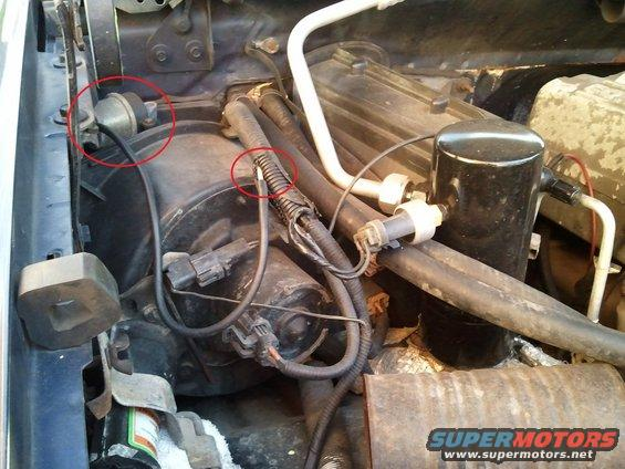 fuel pump fuse 96 f150  fuel  free engine image for user