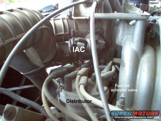 Ford Ignition Wiring Diagram Fuel Together With Fuel Injection Wiring