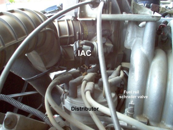 1983 Ford Bronco  9096    Fuel    Pump System pictures  videos