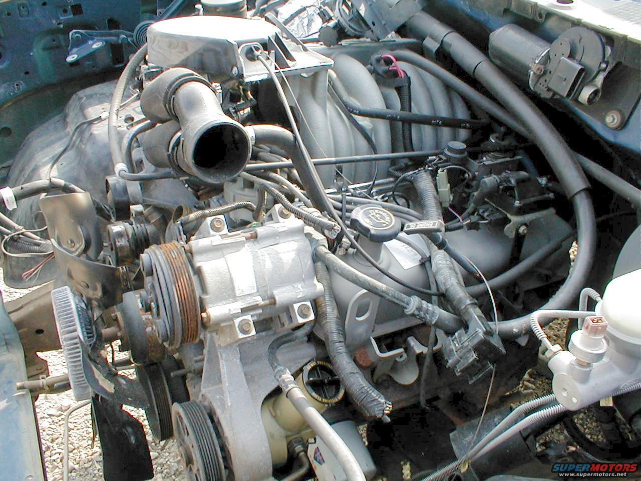 Can Gasoline Damage Car Paint
